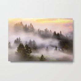Misty Mount Tamalpais State Park Metal Print