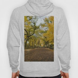 Central Park New York City Hoody