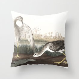 Tell tail goodwit or snipe, Birds of America, Audubon Plate 308 Throw Pillow