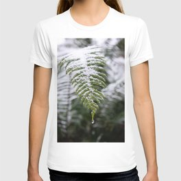 Fern Forest Winter Pacific Northwest Snow II - Nature Photography T-shirt