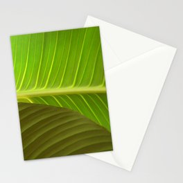 Peaceful Frond Stationery Cards