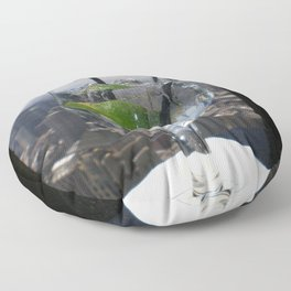 Lime in the Sky Floor Pillow