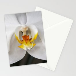 Angels Sing for Outlaws Stationery Cards