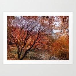 Mad colors of Autumn Art Print