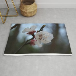 Close Up Apricot Blossom In Pastel Shades Rug