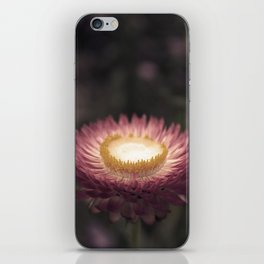 Place Setting iPhone Skin