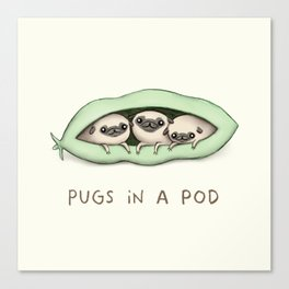 Pugs in a Pod Canvas Print