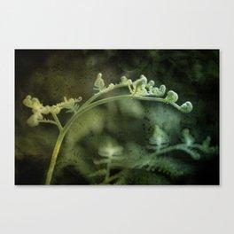 Unfurl Canvas Print