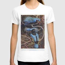 The blue bird of paradise illustrated by Sir Henry Hamilton Johnston (1858-1927) T-shirt