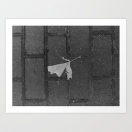 leave and let die, dead leaf, sidewalk urban photography Art Print