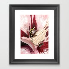 Wasp on flower 7 Framed Art Print