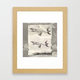 Fable of the Ducks and the Turtle Queen Framed Art Print