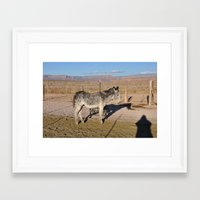 donkey Framed Art Prints featuring DONKEY by DAI CHAN