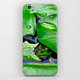 Peek  A Boo frog iPhone Skin