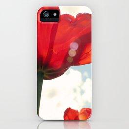 Flower Photography, Deep Ruby Red Art Print, Autumn, Home Decor Nursery Decor  Nature 8x10 iPhone Case