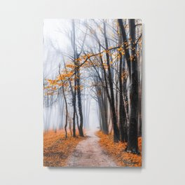 To Travel The Path Unknown Metal Print