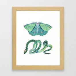 Moth and Snake Framed Art Print