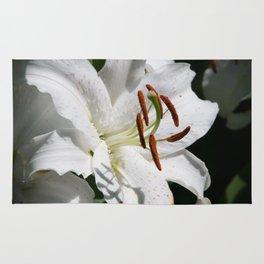 White Lily by Teresa Thompson Rug