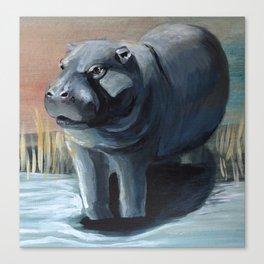 Pygmy Hippopotmus Canvas Print