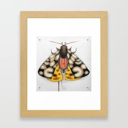 moth (ORIGINAL SOLD). Framed Art Print
