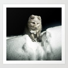 Baby wolf in the snow #animal #photography Art Print