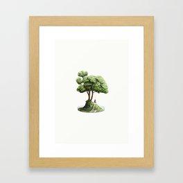 Petri Dreams Framed Art Print