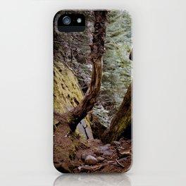 Upward iPhone Case