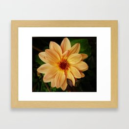 EVERYTHING IS JUST PEACHY DAHLIA FLOWER Framed Art Print
