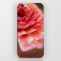 persian iPhone & iPod Skins featuring Persian Buttercup by ThePhotoGuyDarren