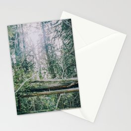 Shining through the forest Stationery Cards