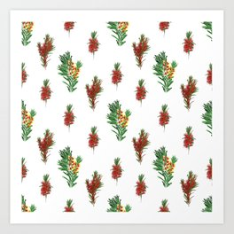 Beautiful Australian Native Floral Pattern Art Print