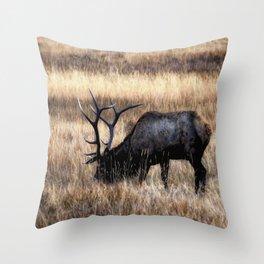 Meadows Of Horseshoe Park Throw Pillow