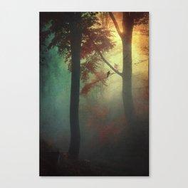 wAking liGht Canvas Print