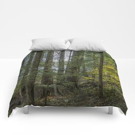 The Woods Around Clear Lake Comforters