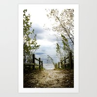 The Land Before the Lake 13x19 High Quality Photographic Print  Art Print