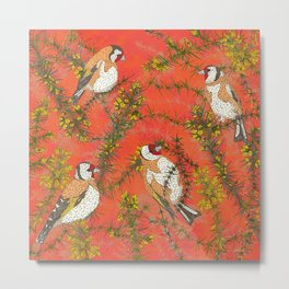 Goldfinches in Gorse Metal Print