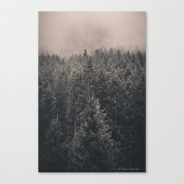 In the wood Canvas Print