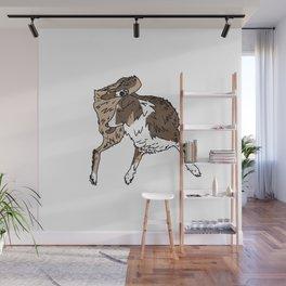 Dog Lover (Brown, White, & Tan Australian Shepherd) Wall Mural