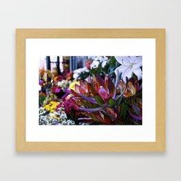 Flower Stand Framed Art Print