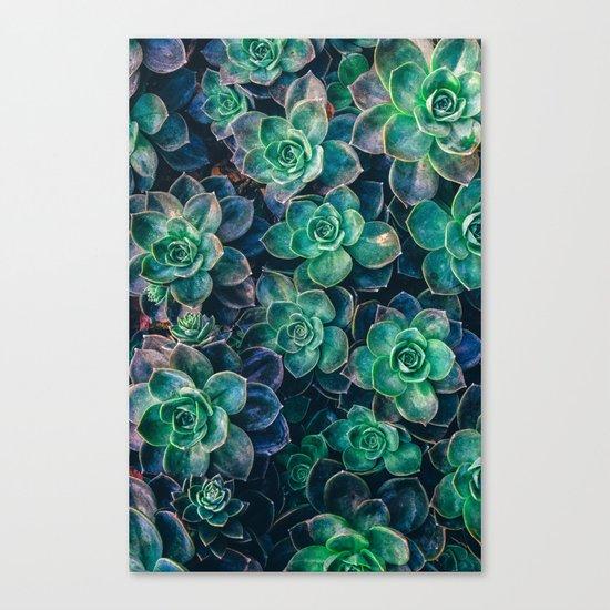 Succulent Gardens Canvas Print
