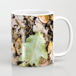 Autumnal leaves on the ground Coffee Mug
