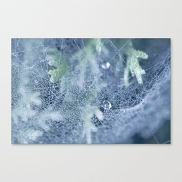 Dewdrops collection #2 Canvas Print