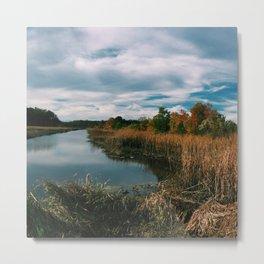 South Carolina Landscape Metal Print