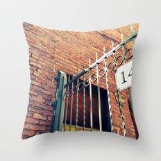 141 Throw Pillow