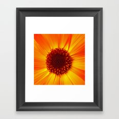 marigold macro Framed Art Print