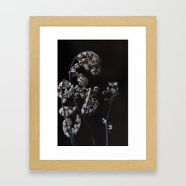my winter Framed Art Print