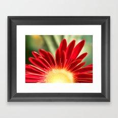 Floral Sunrise Framed Art Print