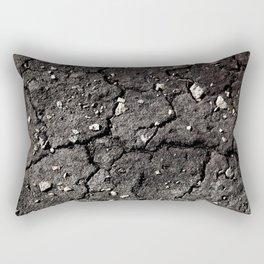 Dry Rectangular Pillow