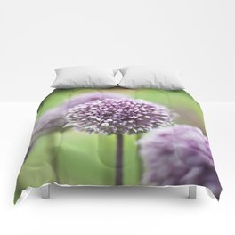 Purple Poms Comforters