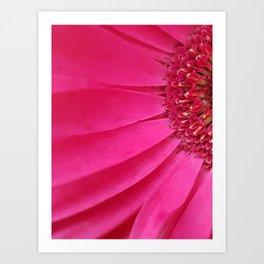 Pink Sunburst Art Print